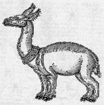 Allocamelus